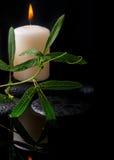 Schöne Badekurorteinstellung der grünen Rankenpassionsblume, Kerzen Lizenzfreies Stockfoto