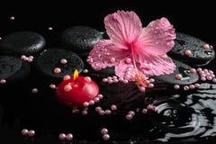Schöne Badekurorteinstellung des empfindlichen rosa Hibiscus, Zensteine Lizenzfreies Stockfoto