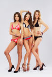 Schöne Baumuster im Bikini lizenzfreies stockbild