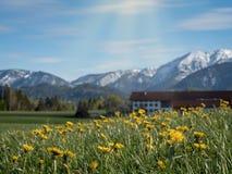 Schöne bayerische Landschaft mit Alpen im Hintergrund stockfotografie