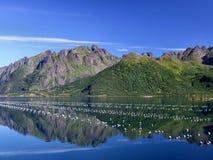 Schöne Berge und Austerenbauernhof stockfotografie