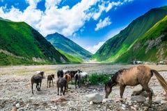 Schöne Berge und blauer Himmel Lizenzfreie Stockfotografie