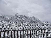 Schöne Berge unter dem Schnee Lizenzfreies Stockbild