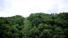 Schöne Berge, Wälder und Drahtseilbahnen, die auf der Spitze steigen nave stock video