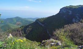 Schöne Berglandschaft mit Draufsicht eines entfernten Waldes umfasste felsige Berghänge Meer weit unten auf dem Horizont stockbild