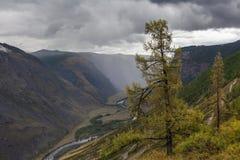 Schöne Berglandschaft mit Fluss Lizenzfreie Stockbilder