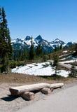 Schöne Berglandschaft Mt. Rainier National Park lizenzfreies stockbild