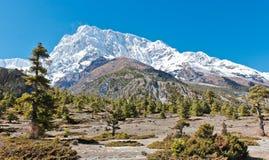 Schöne Berglandschaft in Nepal auf Annapurna-Wanderung stockfoto