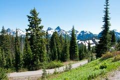 Schöne Berglandschaft, Rainier National Park lizenzfreie stockfotos