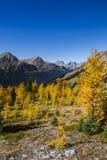 Schöne Berglandschaften im Herbst Stockbilder