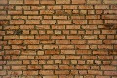 Schöne Beschaffenheit der alten Backsteinmauer lizenzfreie stockfotos