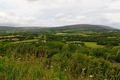 Schöne Beschaffenheit und Landschaften von Irland Stockbild