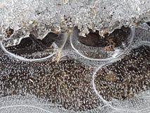 Schöne Bilder des Eises, des Wassers und des Landes in Cañadas Del Teide, Teneriffa 9 Lizenzfreie Stockfotografie