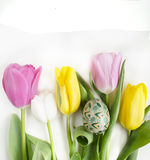 Schöne blühende Tulpenblume und buntes Ei Ostern Blumenauslegung? Hintergrund, Hintergrund, Auslegung der Abbildung Feld des grün Stockfoto