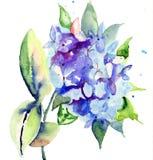 Schöne blaue Blumen Lizenzfreie Stockbilder