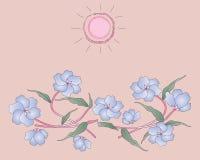 Schöne blaue Blumen Lizenzfreies Stockfoto
