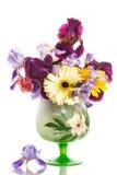Schöne blaue Iris Lizenzfreies Stockfoto