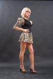 Schöne blonde Aufstellung Stockfoto