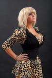 Schöne blonde Aufstellung Stockfotografie