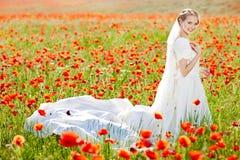 Schöne blonde Braut auf dem Gebiet mit Mohnblumen Stockbilder