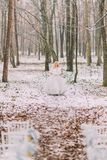 Schöne blonde Braut, die in den Herbstwaldweinlese-Hochzeitsstühlen auf Vordergrund aufwirft Stockbilder