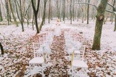 Schöne blonde Braut, die in den Herbstwaldweinlese-Hochzeitsstühlen auf Vordergrund aufwirft Stockfotografie