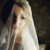 Schöne blonde Braut im Make-up und Schleier in einem stilvollen weißen Dr. Stockfotos