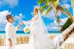Schöne blonde Braut im weißen Hochzeitskleid mit großem langem Weiß Lizenzfreie Stockfotos