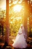 Schöne blonde Braut im weißen Kleid Stockbild