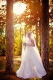 Schöne blonde Braut im weißen Kleid Stockfotos