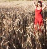 Schöne blonde Frau auf einem Weizengebiet bei Sonnenuntergang Lizenzfreie Stockbilder