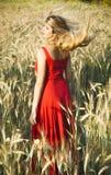 Schöne blonde Frau auf einem Weizengebiet bei Sonnenuntergang Stockfoto