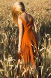 Schöne blonde Frau auf einem Weizengebiet bei Sonnenuntergang Lizenzfreies Stockfoto