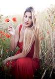Schöne blonde Frau auf einem Weizengebiet mit Mohnblumen bei Sonnenuntergang Lizenzfreie Stockfotos