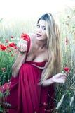 Schöne blonde Frau auf einem Weizengebiet mit Mohnblumen bei Sonnenuntergang Lizenzfreies Stockbild