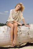 Schöne blonde Frau im braunen Kleid Lizenzfreies Stockbild