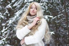 Schöne blonde Frau im Pelzmantel und -schal Stockfoto