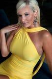 Schöne blonde Frau mit curvy Abbildung Stockfotografie