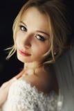 Schöne blonde Hochzeitsbraut im Make-up und Schleier in einem weißen Dr. Stockbilder