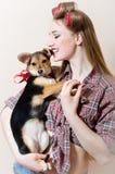 Schöne blonde junge Frau des Pinupmädchens mit Lockenwicklern auf ihrem Haupt, Spaß mit kleinem Hund in ihren Armen auf weißem Ko Stockfotografie