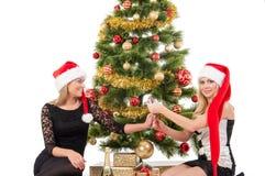 Schöne blonde lächelnde Frauen mit Weihnachtsbaum Stockfotos