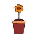 Schöne Blume im Topf Lizenzfreies Stockbild