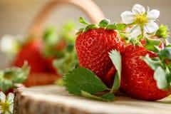 Schöne Blume und rote Erdbeeren Lizenzfreie Stockfotos