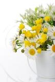 Schöne Blumen Lizenzfreies Stockfoto