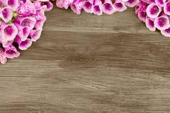Schöne Blumen auf einem hölzernen Hintergrund Lizenzfreie Stockfotos