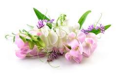 Schöne Blumen auf weißem Hintergrund Blumenauslegung? Hintergrund, Hintergrund, Auslegung der Abbildung Stockbild