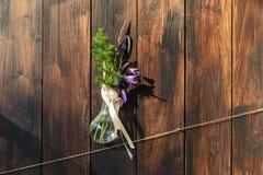 Schöne Blumen in der Flasche, die im Hintergrund einer hölzernen Wand hängt Lizenzfreies Stockfoto