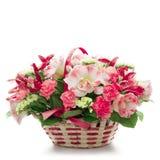 Schöne Blumen in einem Korb getrennt auf Weiß Lizenzfreie Stockfotos
