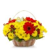 Schöne Blumen in einem Korb getrennt auf Weiß Stockfoto