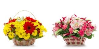 Schöne Blumen in einem Korb getrennt auf Weiß Stockfotografie